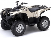 Фото Yamaha Grizzly 700 EPS  №17
